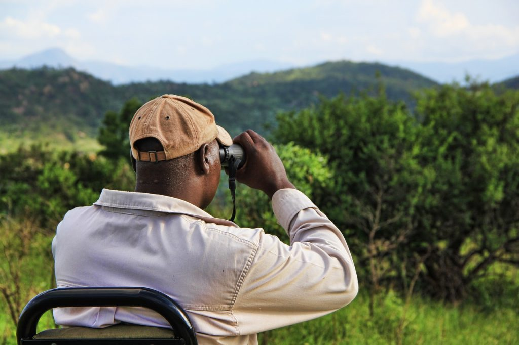 Bets Binoculars For Bird Watching And Nature Spotting